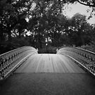 Central Park Bridge  by Vivienne Gucwa