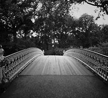 Central Park Bridge  by Vivienne Gucwa