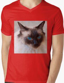 0807 Old Blue Eyes Mens V-Neck T-Shirt