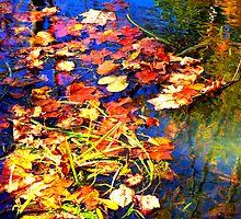 Autumn Splendor by studiohaus