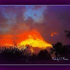 SUNSET STORM by Claire Moreau