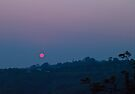 Sunrise, Terranora, Australia 17 Sept 2011 by Odille Esmonde-Morgan