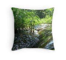 Flowing Creek~ Throw Pillow