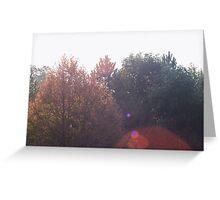 Sun Flare  Greeting Card