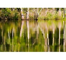 Reflection on Brice's Creek Photographic Print