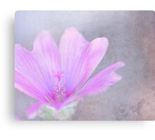 Pink perfection - mallow marvel Canvas Print