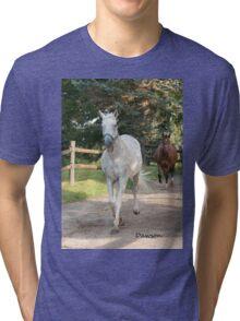 Dawson (2000 - 2011)- NNEP  Ottawa, ON Tri-blend T-Shirt