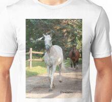 Dawson (2000 - 2011)- NNEP  Ottawa, ON Unisex T-Shirt