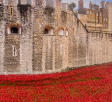 Tower Of London Poppies 2014 Sticker