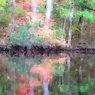Fall Colors on Brice's Creek by NCBobD