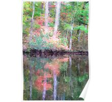 Fall Colors on Brice's Creek Poster