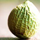 Wrinkly Green Beach Fruit by Hege Nolan