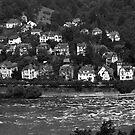Heidelberg Castle in Black & White by thruHislens .