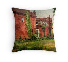 Abandonded Building Near Downtown Toledo, Ohio Throw Pillow