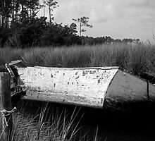 Abandoned - Wooden Boat Sunk in a Canal by NCBobD