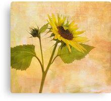 Saying Goodbye to Summer Canvas Print