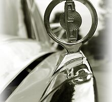 Up Close and Personal (Edsel) by nastruck