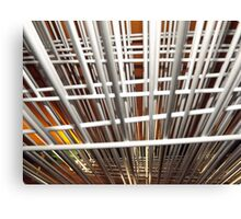 A Wired Perspective Canvas Print
