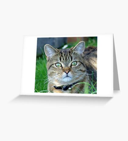 Strike a pose! Greeting Card