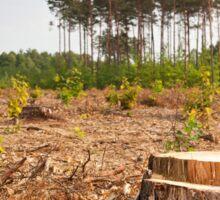 Woods lone trunk in deforestation Sticker