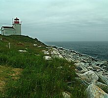 Port Bickerton Lighthouse by George Cousins