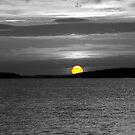 Sundown by Barbara Gerstner