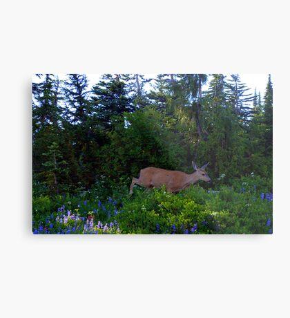 """""""Deer"""" Metal Print"""
