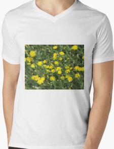 Thickets of small yellow flowers Picris Rigida Mens V-Neck T-Shirt