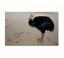 Ms Etty - cassowary on the beach Art Print