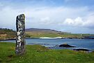 Standing Stone on the Isle of Eigg, Scotland by David Alexander Elder