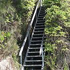Stairway to Heaven by waxyfrog