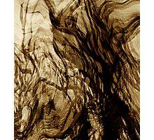 spirit tree.... lost souls Photographic Print