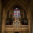 Cathedral interiour by Rene Fuller