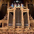 Organ Bling by Rene Fuller