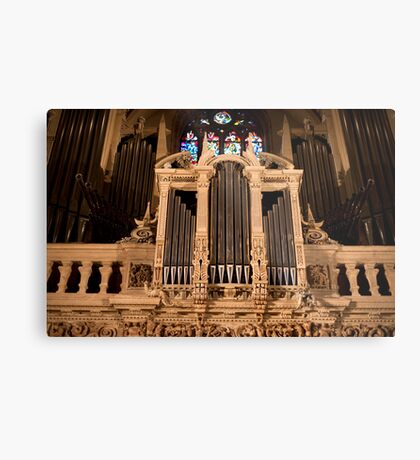 Organ Bling Metal Print