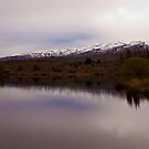South Island Lake - Near Ettrick  by Paul Davis