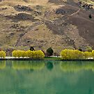 Clyde Dam - South Island - New Zealand by Paul Davis