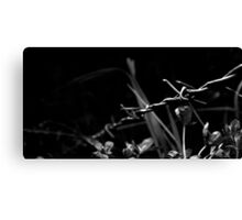 Black and White Barb Canvas Print
