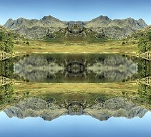 Reflections In Reverse...Alternative Reality by Jamie  Green