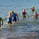 Kingscliff Triathlon 2011 Swim leg C275 by Gavin Lardner