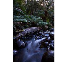 Badger creek 2 Photographic Print