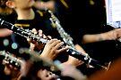 Clarinets by Renee Hubbard Fine Art Photography