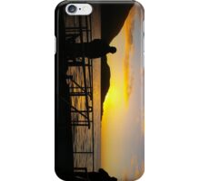 Sunset on Milford iPhone Case/Skin