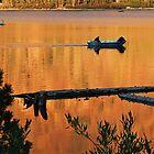 Fishing Buddies by Leon Heyns