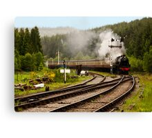 The Train Arriving Canvas Print