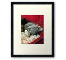 Her Own Pet Framed Print