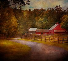 Farm - Barn - Rural Journeys  by Mike  Savad