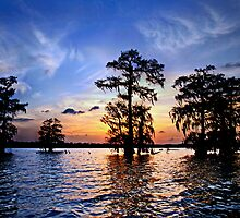Sunset over Lake Martin, Louisiana by cclaude
