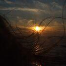 Hair, Wind  by cishvilli