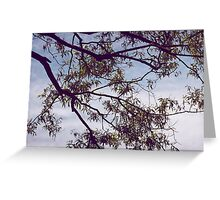Leaves on the Trees, Clouds in the Sky Greeting Card